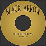 President Brown Tree Of Life
