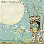 Michael Allen Harrison Moonlight Owl