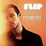 Flip Possibilities