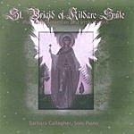 Barbara Gallagher St. Brigid Of Kildare Suite