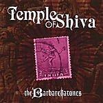 The Barbarellatones Temple Of Shiva