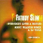 Fatboy Slim Everybody Loves A Bootleg