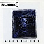 Numb Suspended