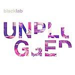 Black Lab Unplugged