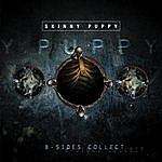 Skinny Puppy B-Sides Collection