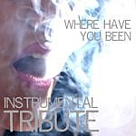 The Singles Where Have You Been (Rihanna Instrumental Tribute) - Single