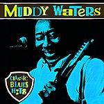 Muddy Waters Classic Blues Hits
