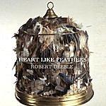 Robert Deeble Heart Like Feathers (Single)