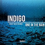 Indigo One In The Rain