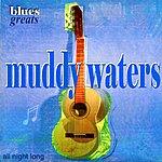 Muddy Waters Blues Greats - Muddy Waters
