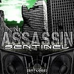 Sentinel Assassin