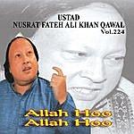 Ustad Nusrat Fateh Ali Khan Allah Hoo Allah Hoo Vol. 224 - Qawwalies