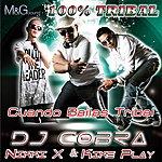 DJ Cobra Cuando Bailas Tribal - Single