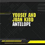 Yousef Antelope