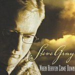 Steve Gray When Heaven Came Down