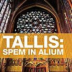 Sir David Willcocks Tallis: Spem In Alium