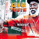 Big Youth Musicology
