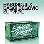 Hardsoul Survival