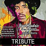 Robin Morris An Instrumental, Orchestral Tribute To Jimi Hendrix