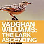 Nicola Benedetti Vaughan Williams: The Lark Ascending