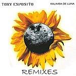 Tony Esposito Kalimba De Luna - Remixes