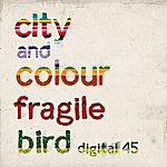 City and Colour Fragile Bird (Digital 45)