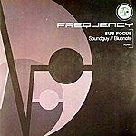 Sub-Focus Soundguy/Bluenote