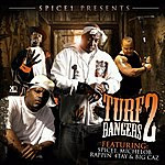 Cover Art: Spice 1 Presents Turf Bangers #2