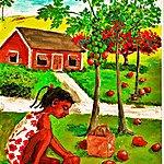 Rosa Rosa's Paw Paw Tree - Single