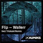 Flip Wallerr