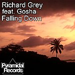 Richard Grey Falling Down