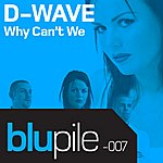 D-Wave Why Can't We