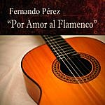 Fernando Perez Por Amor Al Flamenco