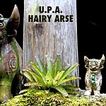 UPA Hairy Arse - Single