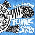Noah Baerman Trio Turtle Steps