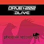Dave202 Alive