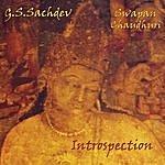 G.S. Sachdev Introspection