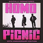Homo Picnic Days Of Grey (25th Anniversary Remastered Edition)