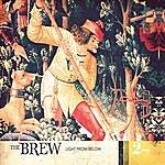 Brew Light From Below