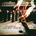 Unity Browning: Secret Pulse
