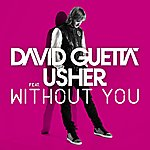 David Guetta Without You (Feat.Usher) [Style Of Eye Remix]