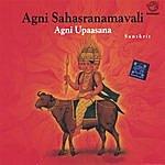 Prof.Thiagarajan & Sanskrit Scholars Agni Sahasranamavalli Agni Upaasana