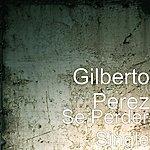 Gilberto Perez Se Perder - Single