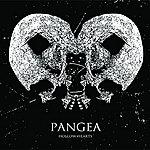 Pangea Hollow Hearts