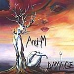 Anti-M Damage