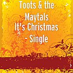 Toots & The Maytals It's Christmas - Single