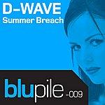 D-Wave Summer Breach