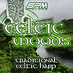 The Dreamers Celtic Moods