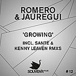 Romero Growing