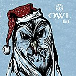 Owl Alive Acoustic - Single